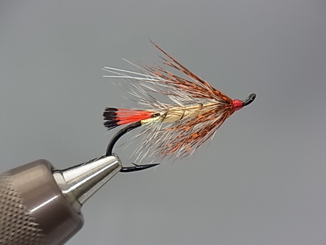 Aqua Steelhead Soft Hackle Cream #8