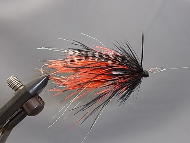 Aqua Stu's Barred Ostrich Intruder Orange/Black