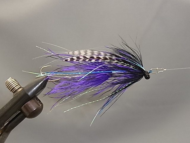 Aqua Stu's Barred Ostrich Intruder Black/Purple