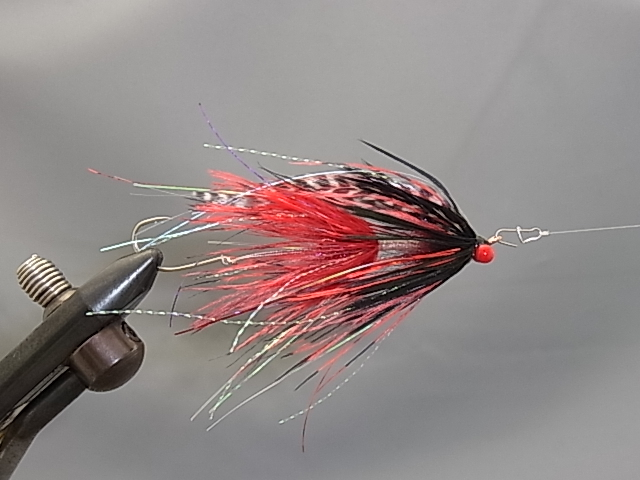 Aqua Stu's Barred Ostrich Intruder Red/Black
