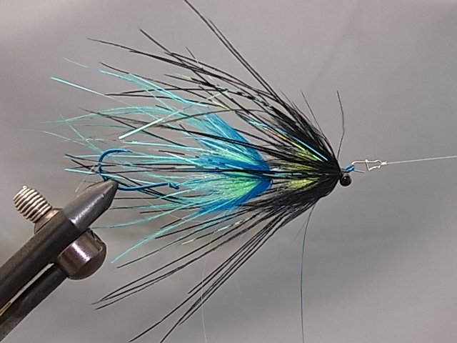 Aqua Stu's Rhea Intruder Black/Blue