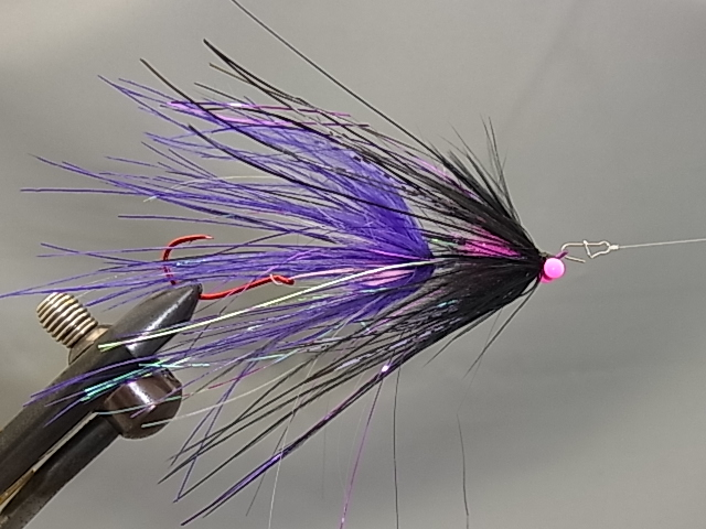 Aqua Stu's Rhea Intruder Purple/Black