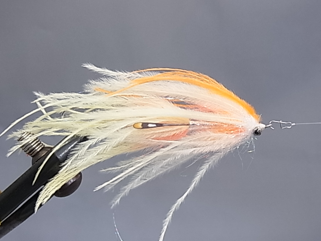 Aqua Jerry's Intruder Orange/White