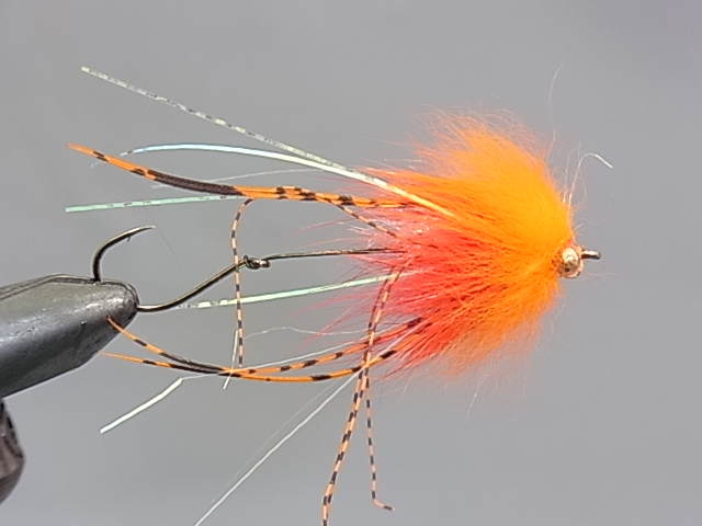 Aqua Brett's Klamath Intruder Orange