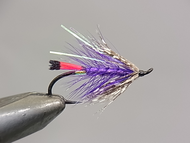 Aqua Steelhead Soft Hackle Purple #8